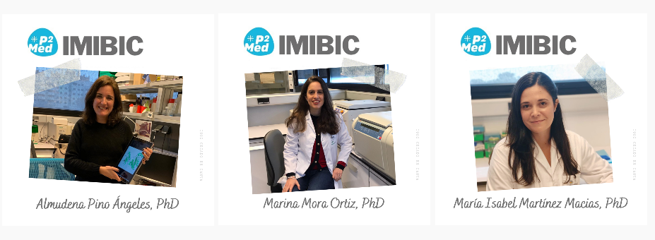 The first IMIBIC-P2Med Fellows start their projects at IMIBIC